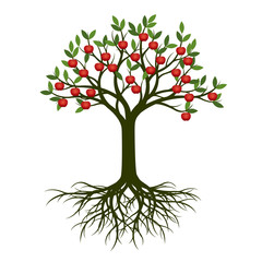 Green Summer Tree with Root and red apple fruits. Vector Illustration.