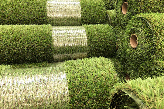 Rolls of new artificial grass in the shop