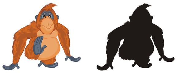 orangutan, monkey, primacy, animal, zoo, nature, illustration, orange, two, different
