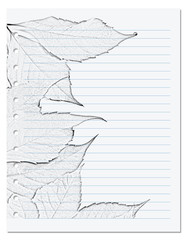 Notebook sheet in ruler with black and whiteof virginia creeper leaf