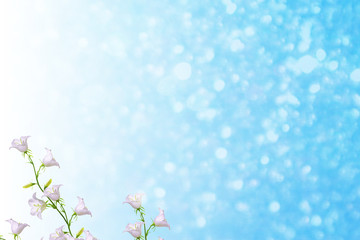 Bright and colorful flowers bells. Floral background.