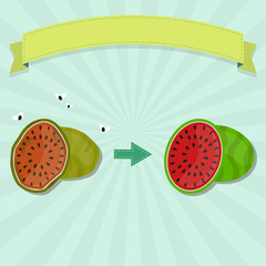 New Watermelon and rotten Watermelon with flies. Blank ribbon for insert text.