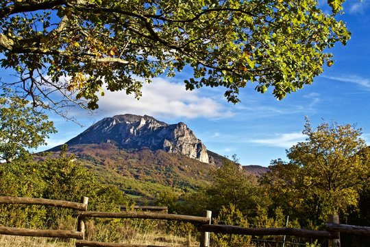 Hiking Around Bugarach in the South of France, Sunny Day, Under Tree