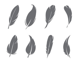 Monochrome pictures of feathers isolate on white background