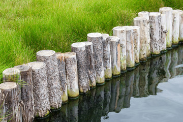 a row of cut timber logs along the shore of a pond next to waving green grass in a Japanese garden with water reflections