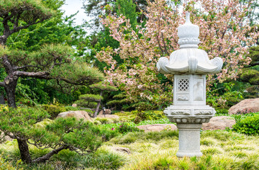 carved Kasuga lantern in front of a cherry blossom tree and lush greenery in a Japanese garden