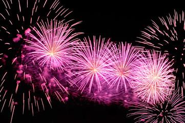 Amazing purple fireworks on black background