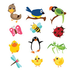 animals vector character design