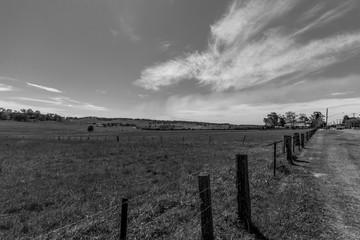 Black and White Farmland, NSW, Australia