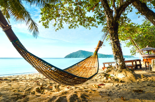 Empty hammock between palm trees on tropical beach