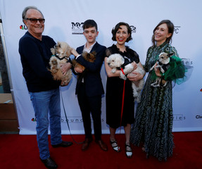 """Cast members Fonda, MacDougall, Schaal and Farmiga hold dogs as they pose at the premiere for the movie """"Boundaries"""" in Los Angeles"""