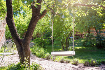 Wooden swing on ropes under the big tree in the garden.