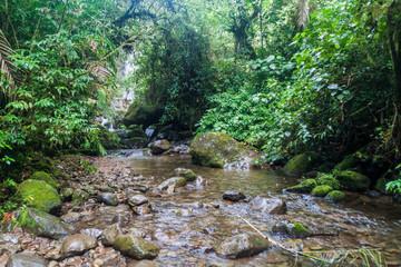 Small creek near Boquete, Panama