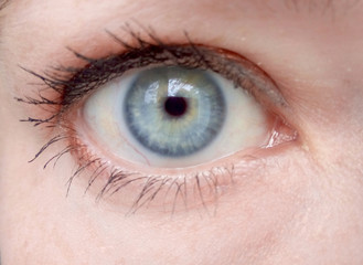Eye close, macro