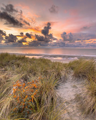 Wall Mural - View from dune over North Sea sunset