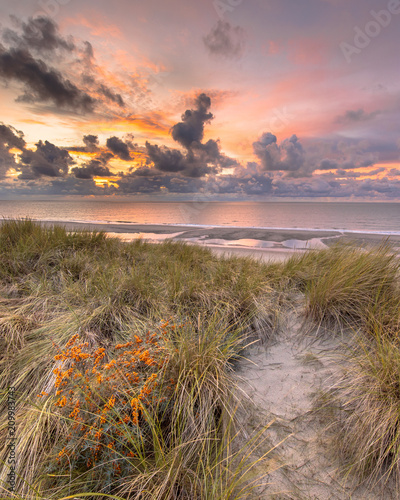 Wall mural View from dune over North Sea sunset