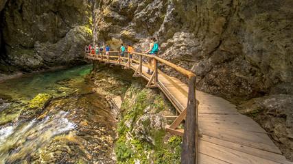 Soteska vintgar gorge boardwalk along river
