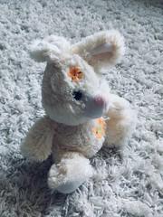 Stuffed animal toy photo close up
