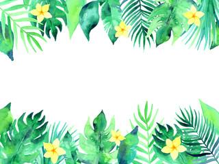 Summer tropical background illustration