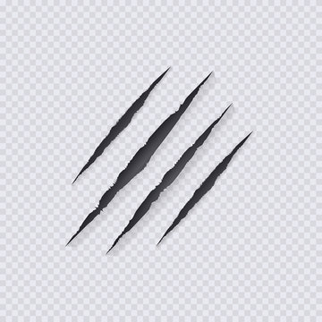 Vector Claws Scratches Illustration,Isolated on Transparent Background, Claws Scratching.