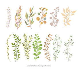Handdrawn Vector Watercolour style, nature illustration. Set of