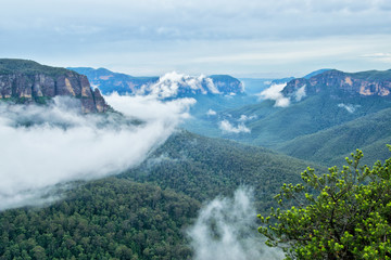 Cliff Top Track View. Blue Mountains in Australia.