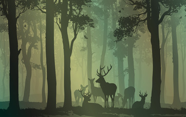 Wall Mural - natural background with forest silhouette with herd of deer