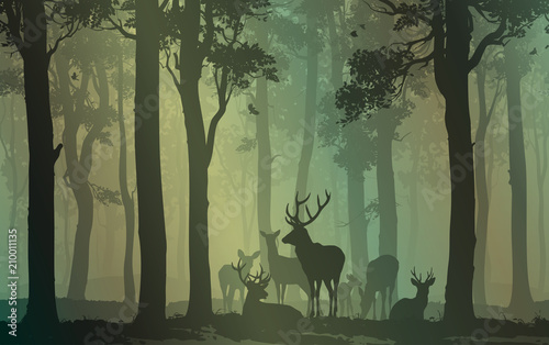 Wall mural natural background with forest silhouette with herd of deer