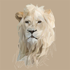 Lion low poly design. Triangle vector illustration.