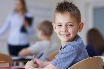 Portrait of smiling schoolboy in class