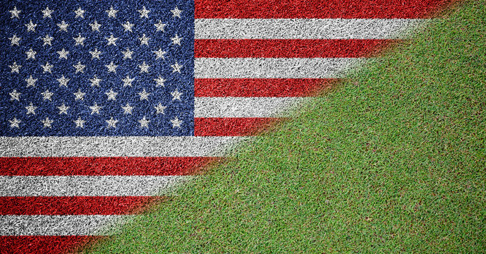USA Flag Grass Textured Background Design