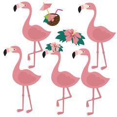 Cute flamingo vector cartoon illustration