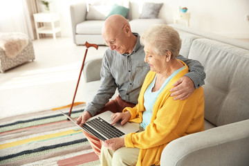 Elderly couple using laptop in living room