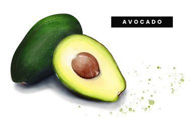 Watercolor Isolated art of avocado