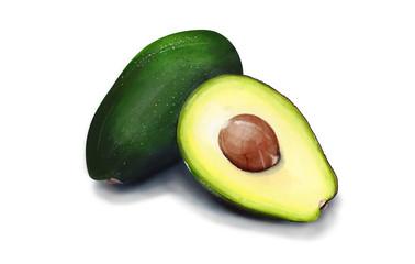 Watercolor illustration of avocado.