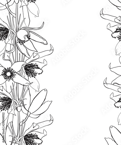 Hand Drawn Vintage Floral Seamless Pattern Black And White Stock Vector Illustration