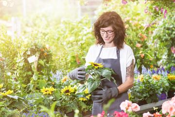 Gärtnerin im Gartencenter mit einem Topf Sonnenblumen im Sonnenlicht