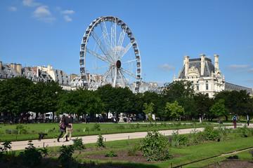 Jardin des Tuileries à Paris, France