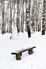 bench and snowman in birch grove in winter