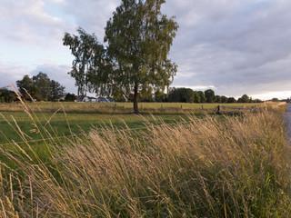 Wanderung durch die schöne Landschaft von Ostwestfalen im Norden Deutschlands Hier Abendstimmung über den Feldern
