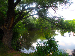 a nice, quiet beautiful pond