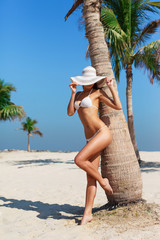 Sexy beautiful tanned woman relaxing and sunbathing in bikini on sea background and palm. Panoramic view from Al Mamzar beach Dubai, UAE. Famous tourist destination.