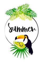 Bright summer card with palm leaves, papaya, toucan, frame and text on white background. Vector tropical banner.