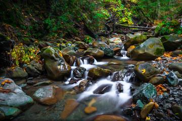 Rocky, smooth Flowing Sanborn Creek in Santa Cruz Mountains, California