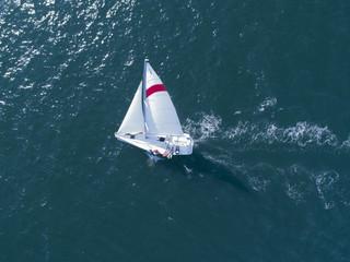 海を走るヨットの上で楽しんでいる人