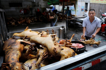 Butchered dogs are sold at a stall inside a meat market during the local dog meat festival in Yulin