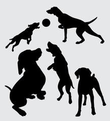 dog playing silhouette