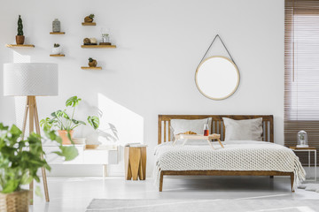 A white, sunlit hotel bedroom interior with monstera deliciosa plant, cacti on shelves and a round mirror above a rustic, wooden double bed frame