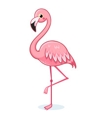 Cute pink flamingo on a white background. Vector illustration with bird on white background in cartoon style.