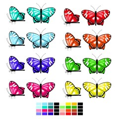 vector butterfly set 1